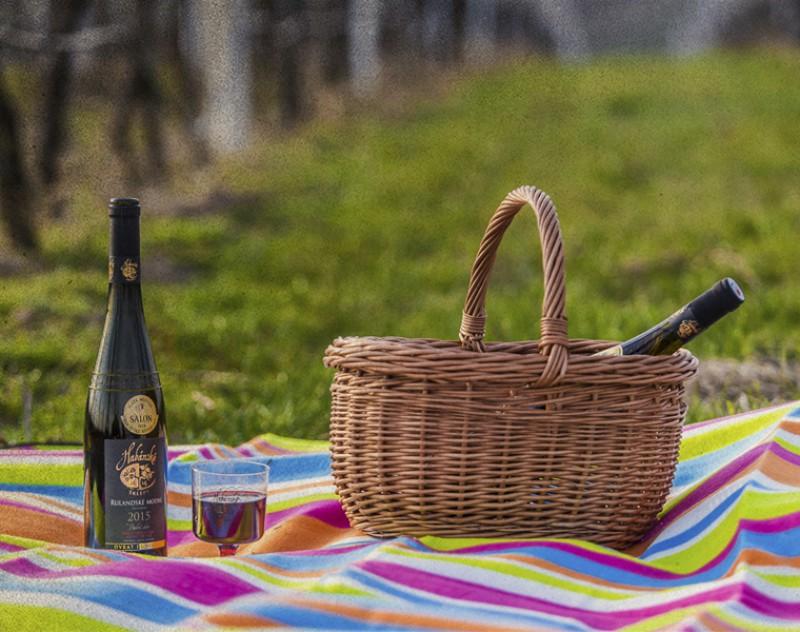 Čas pikniků a výletů