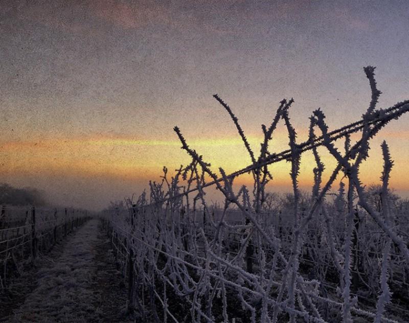 Zima ve Velkých Bílovicích